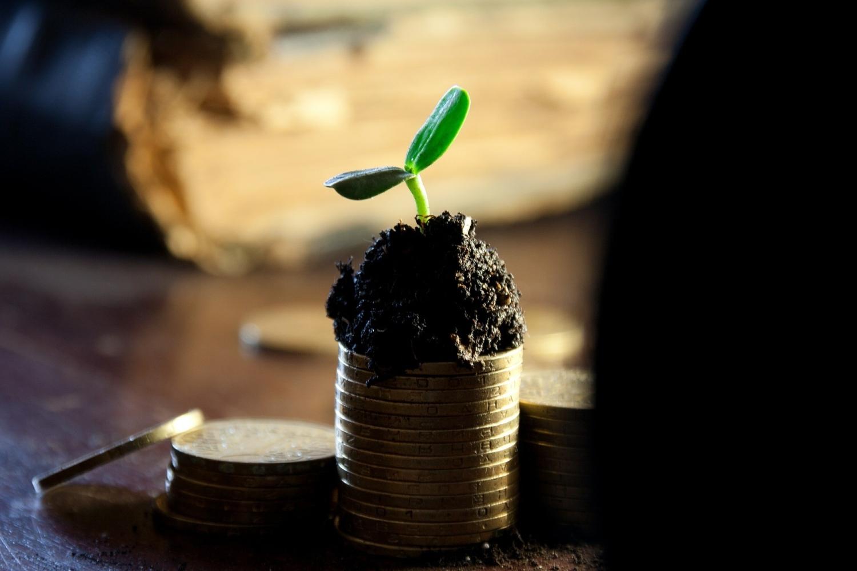 Nace AlMa. One Stop Solution solución integral  financieras y legales