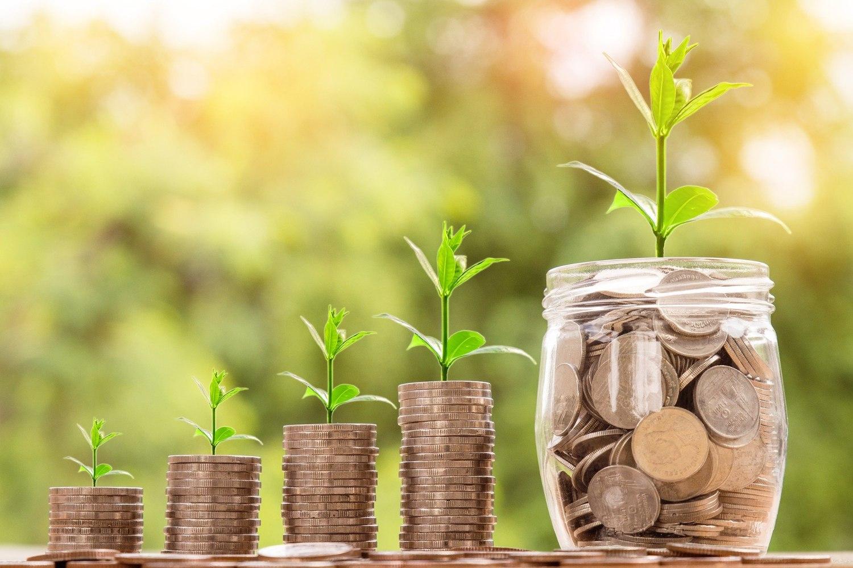 Imagen de ahorro, crecimiento y dinero.
