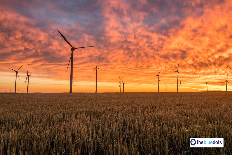 Thebluedots, la startup española que revoluciona el sector agrícola